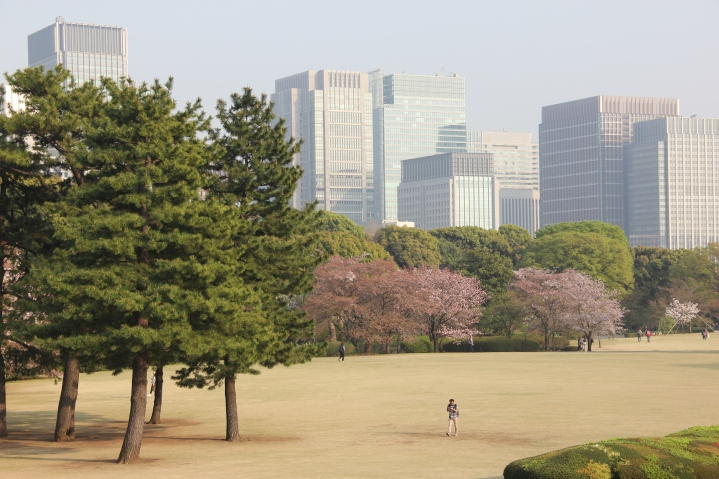 The imperial palace garden