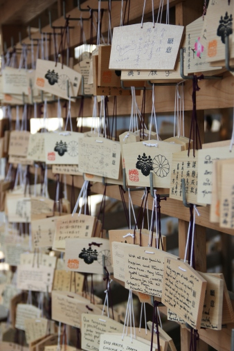 Wishes written by visitors