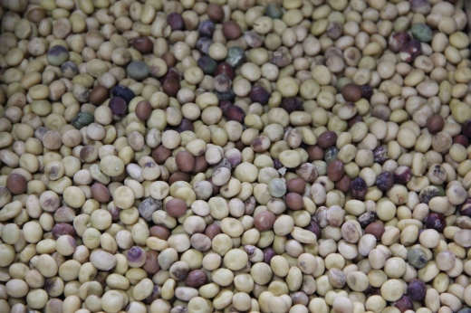"The ""bad"" soybeans"