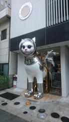 Some last craziness of Japan
