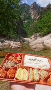 Another bento with a view!